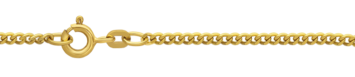 Necklet Curb chain chain width 2.1mm