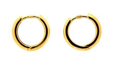 Earring ear hoops 2,2 mm