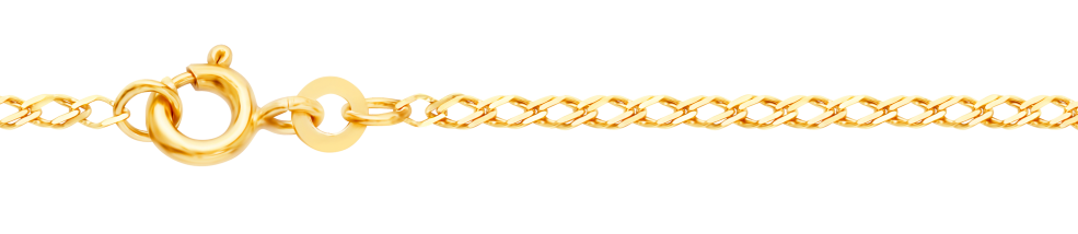 Necklet Twin curb chain chain width 1.6mm